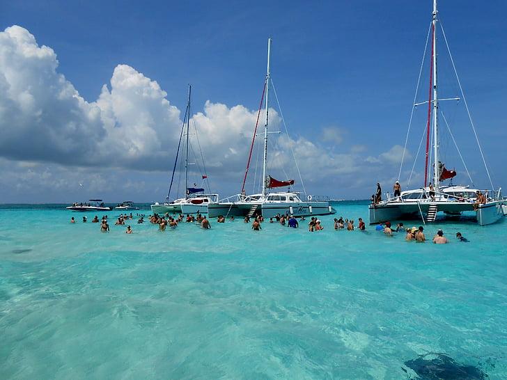 grand-cayman-cayman-islands-stingray-city-stingrays-preview.jpg